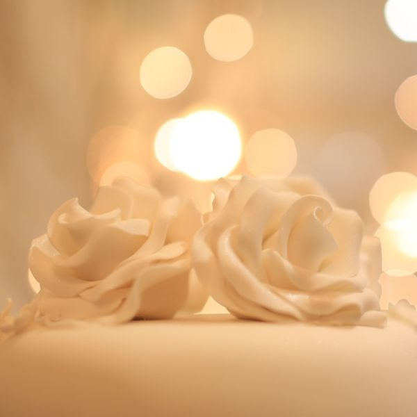 Ivory Roses